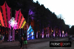 Electric-Forest-Night-Time