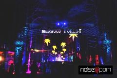 Sherwood-Forest-EF