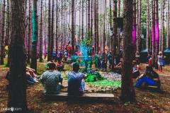 Noiseporn_ElectricForest_AngelicaDulany-7396