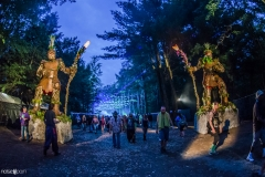 Noiseporn_ElectricForest2018-0160