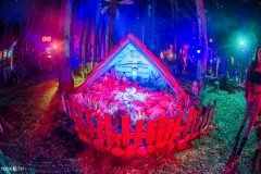 Noiseporn_ElectricForest2018-0178