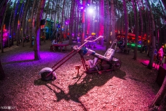 Noiseporn_ElectricForest2018-0471