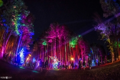 Noiseporn_ElectricForest2018-0774