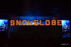 NP_SnowglobeWM-186