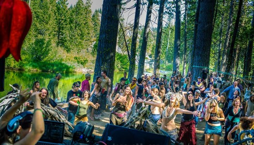 Enchanted Forest Gathering Tickets Go on Sale