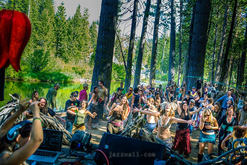 enchanted forest gathering