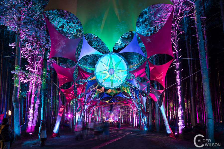 electric forest