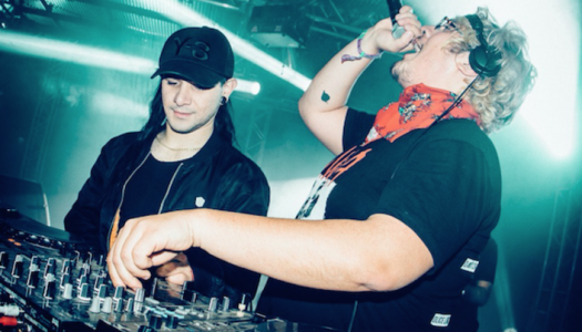 Check out Skrillex's Brand New ID with Snails