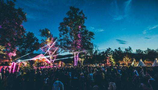 Claude VonStroke Reveals Dirtybird Campout East Phase 3 Lineup