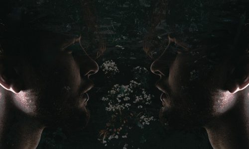 "Crywolf – ""Windswept"""