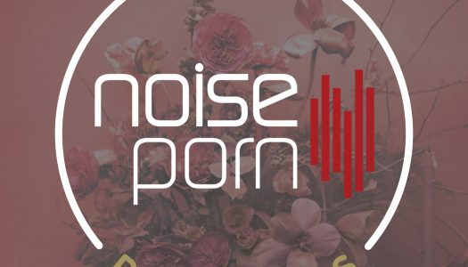 Noiseporn x Daily Playlists #5