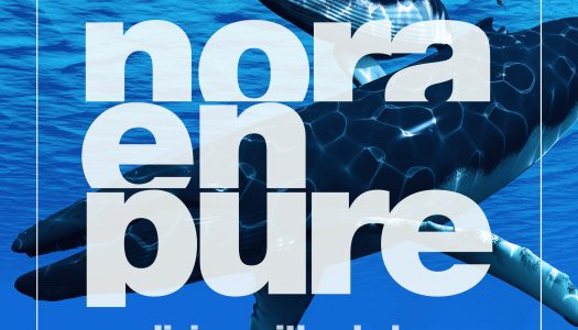 """Nora En Pure Releases Ambient Track """"Diving with Whales"""""""