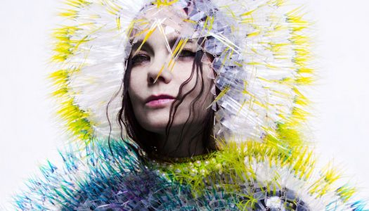 Björk Calls Out Industry Sexism in Moving Facebook Post