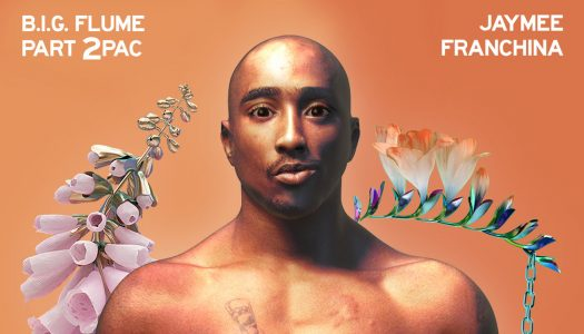 Someone Created A Full Album of Flume and 2pac Mashups and It's Amazing