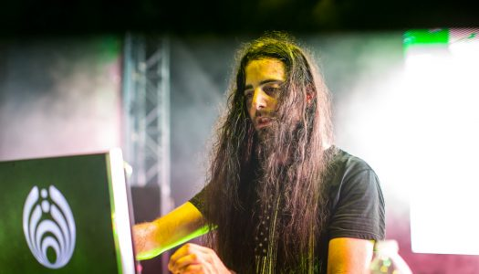 Dear Bassnectar, What Are You Doing?