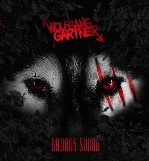 wolfgang-gartner