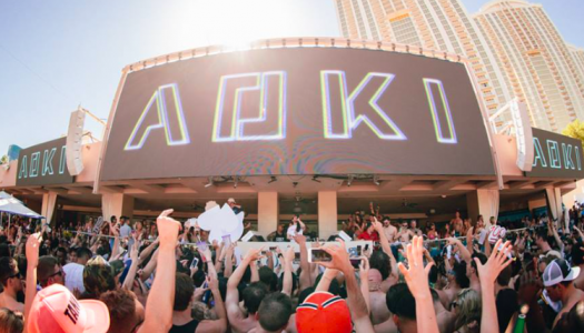 Steve Aoki and Dim Mak Announce 'Late Checkout' EDC Weekend Pool Party