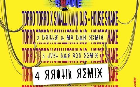 "Torro Torro & Smalltown DJs – ""House Shake"" (rrotik Remix)"