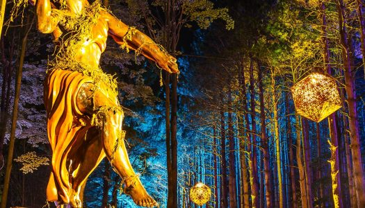Electric Forest Remains in the Top Tier of U.S. Festivals [Event Review]