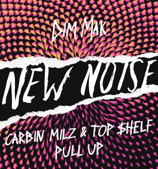 carbin-milz-top-shelf-pull-up