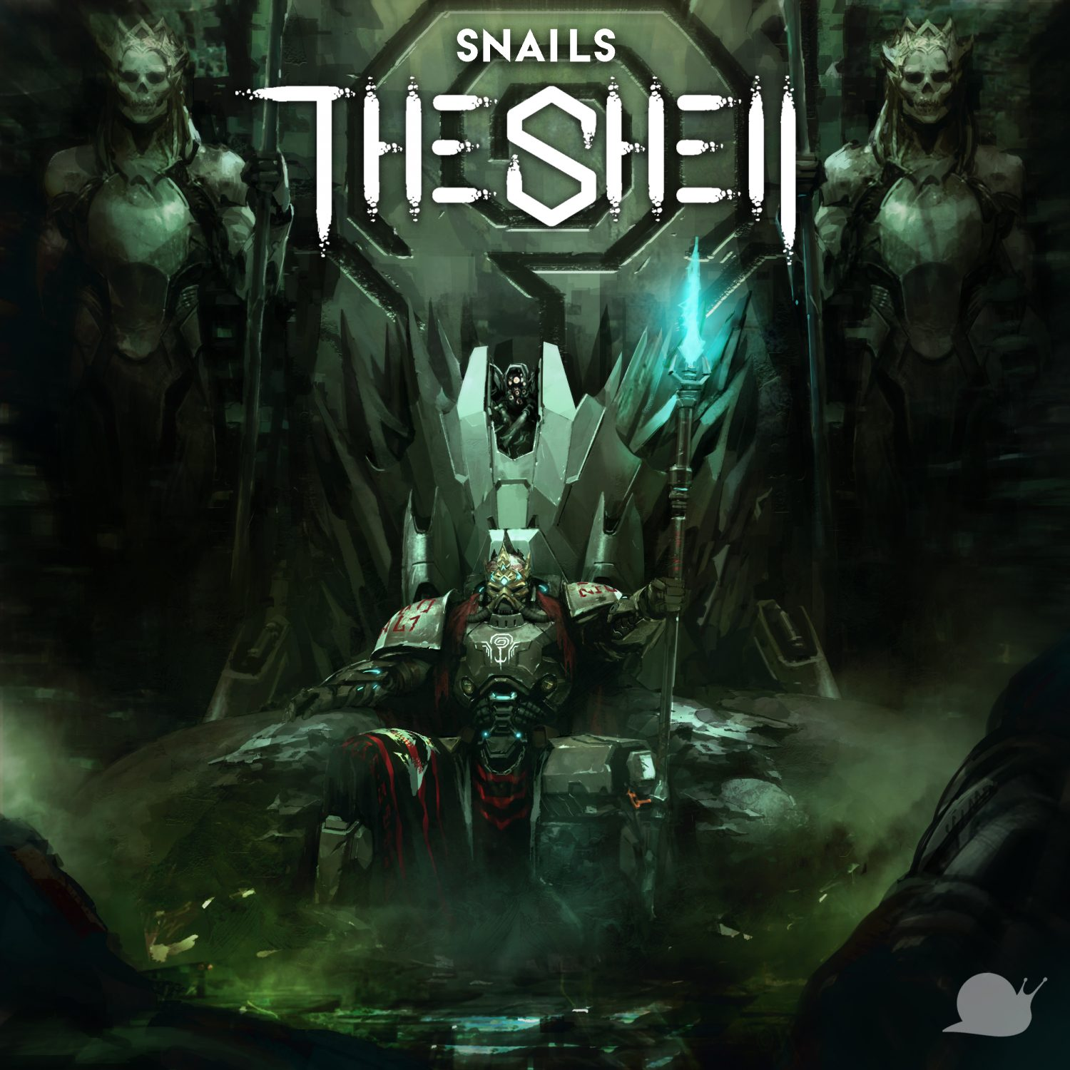 snails the shell