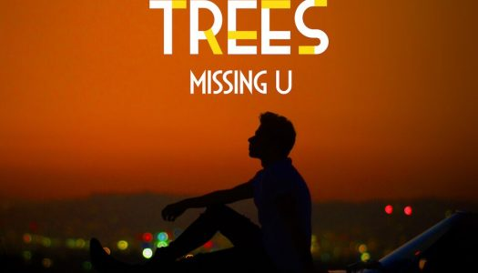 """Palm Trees Excels With His New Track """"Missing U"""""""