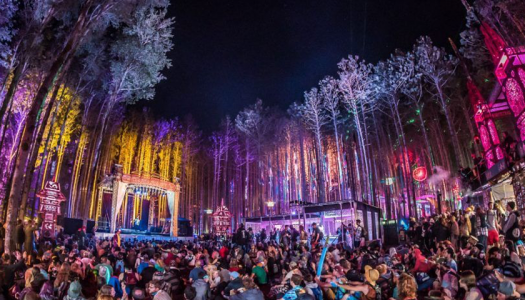 Here's What Went Down at Electric Forest 2018 Weekend One