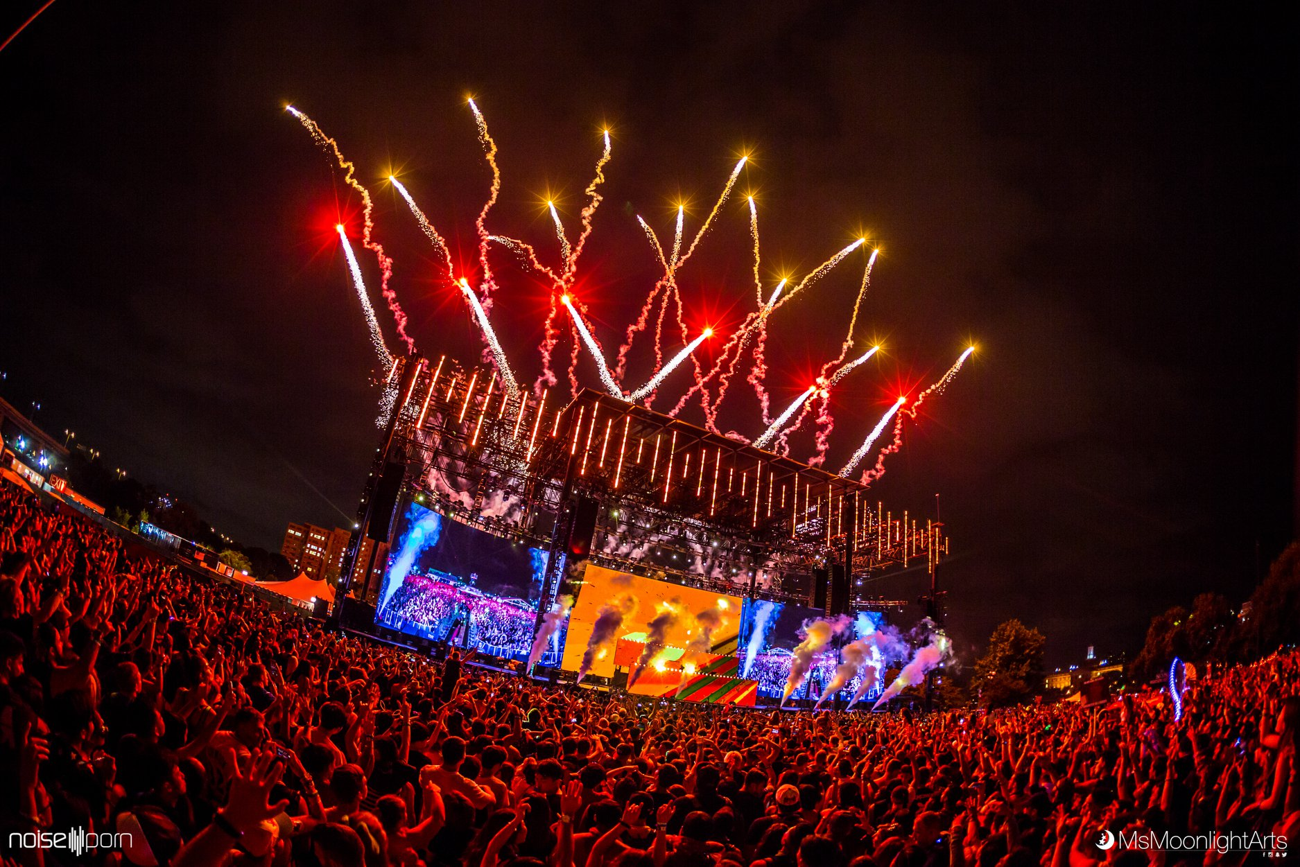 5 Must-See Artists at Electric Zoo 2019 - Noiseporn