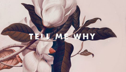 "KRANE Releases First Original in Two Years ""Tell Me Why"""